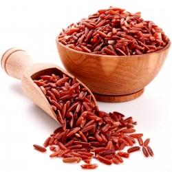 Rakthashali Red Rice Seeds