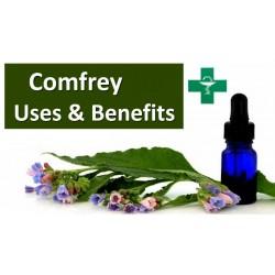 Comfrey Seeds - Symphytum officinale