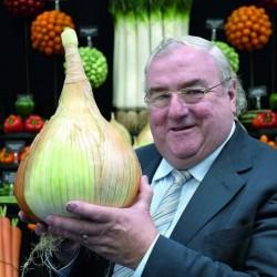 The Kelsae Giant Onion Seeds 2 - 6