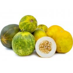 DOSAKAI Indian Cucumber Seeds 1.75 - 1